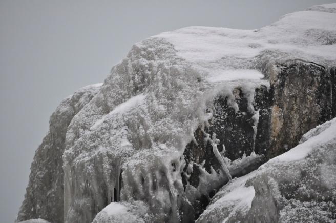 Ice Cap, Lake Forest Beach