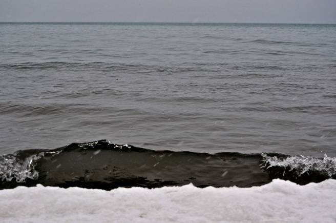 Lake Forest Beach in Winter