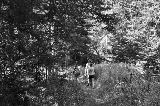 Hannah, Blake and Sasha hiking on Cove Trail.